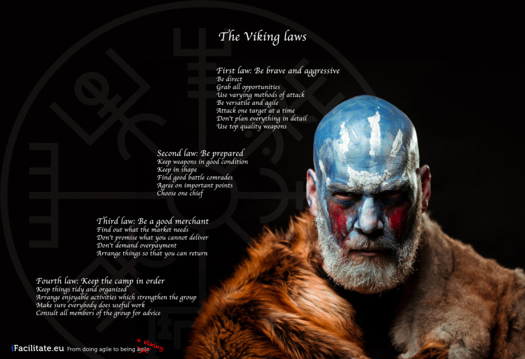 the viking laws